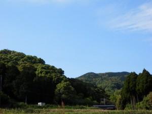 魚蓮坊窯近くの山